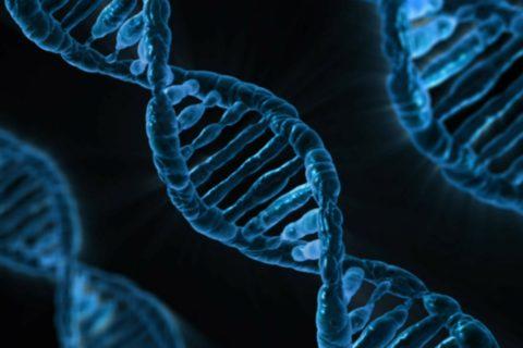 Brasileiro com câncer terminal terá alta após terapia genética pioneira obter sucesso pela 1ª vez na América Latina